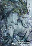 Hippocampus - Juri H. Chinchilla