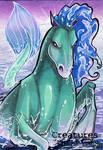 Hippocampus - Stacey Kardash