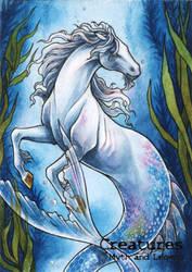 Hippocampus - Athina Poda Konstantinidou by Pernastudios