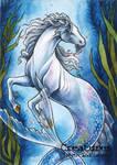 Hippocampus - Athina Poda Konstantinidou