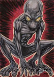 Dover Demon - Roberto Ariel Mamani