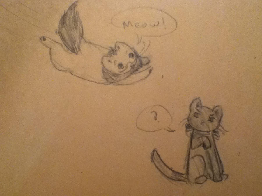 Americat annoying Germany Cat APH by blueremix