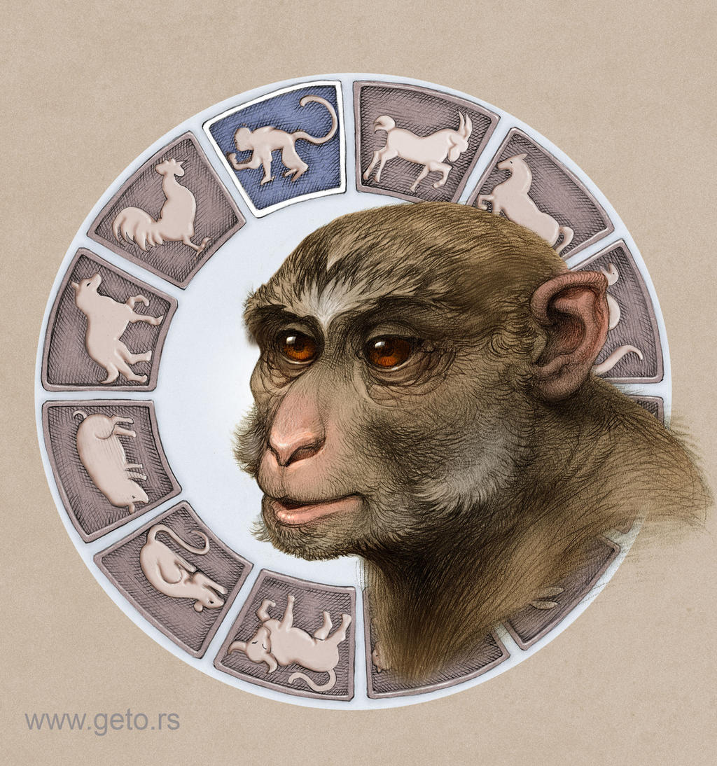 Year of the Monkey by Boban-Savic-Geto