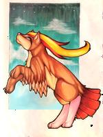 Pidgeot by czaria