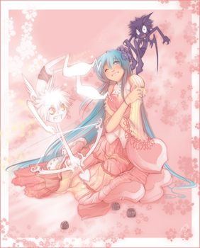 Miso Valentine