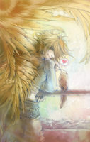 Finch by shirotsuki