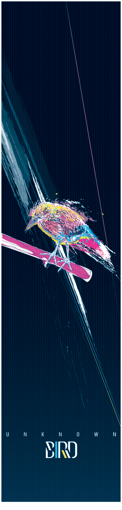 Unknown BIRD by Delicious-Daim