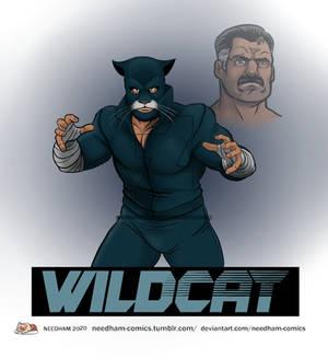 WildCat Redesign