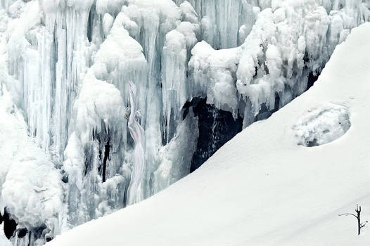 ice age creature