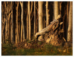 sleeping of the ghost root by LailaPregizer