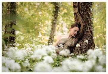 secret of the forest by LailaPregizer