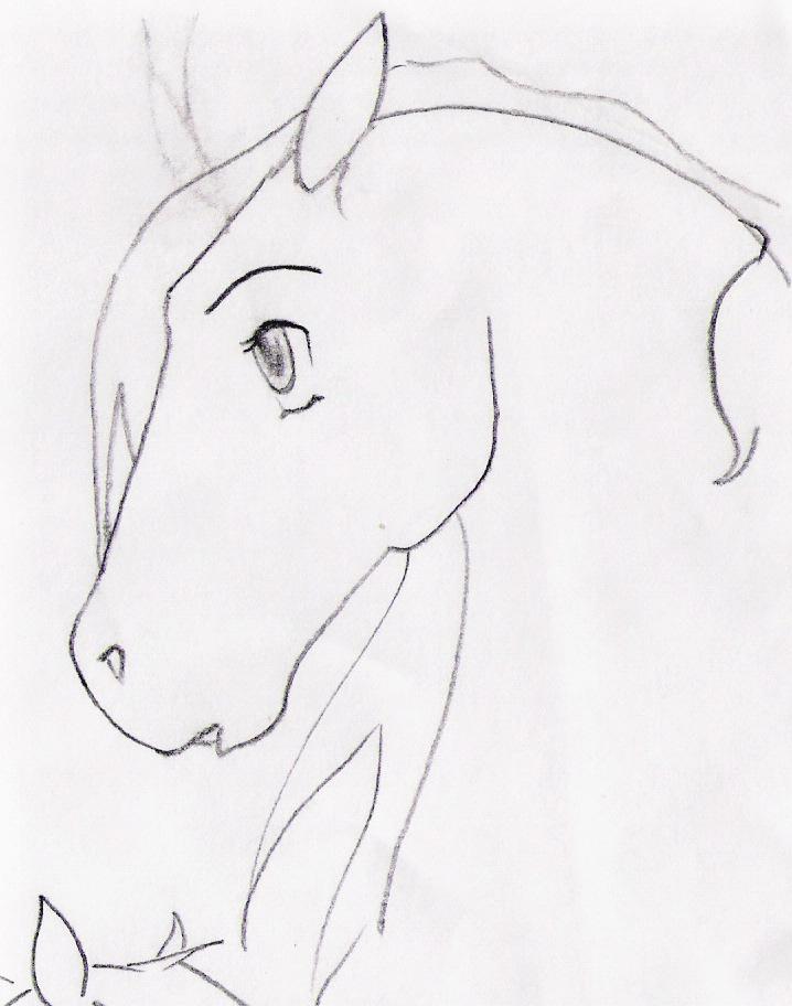 Horse Cartoon Drawing