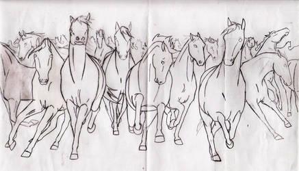 Horse Herd Outline