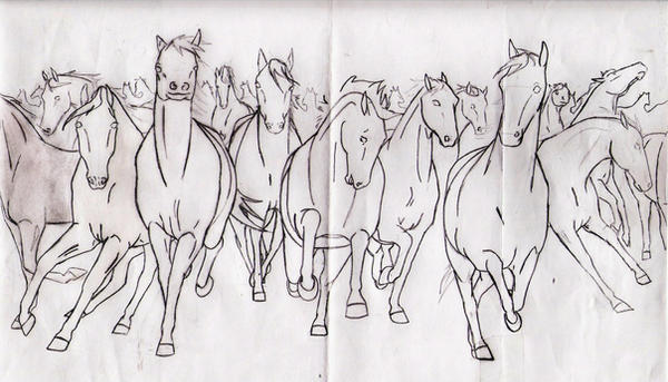 Horse Herd Outline By DelightsJD On DeviantArt