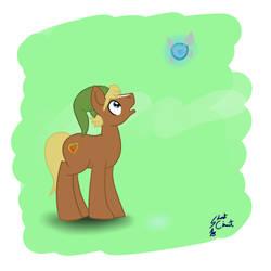 Link Pony