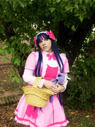 Stocking Pink Dress Cosplay