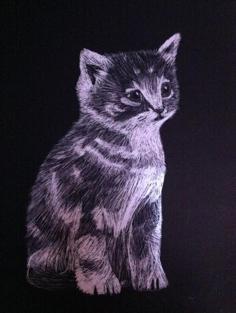 Kitty Cat Scratch Art By Crazyideamaster