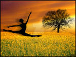 Leap of Faith -Revised-