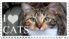 I Love Cats Stamp by 123Stamps123