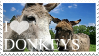 I Love Donkeys stamp by 123Stamps123