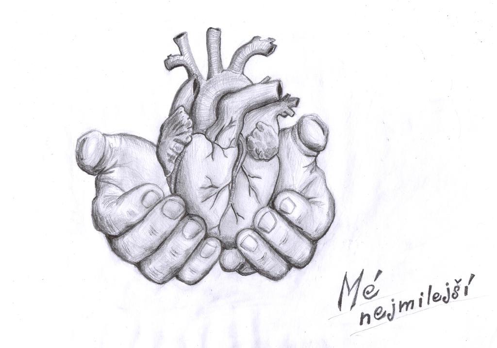 Heart donation by Drahoslav7