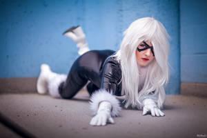 Cat prowl by DarkFelicia
