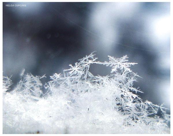 Snowflakes by HelgaCupcake