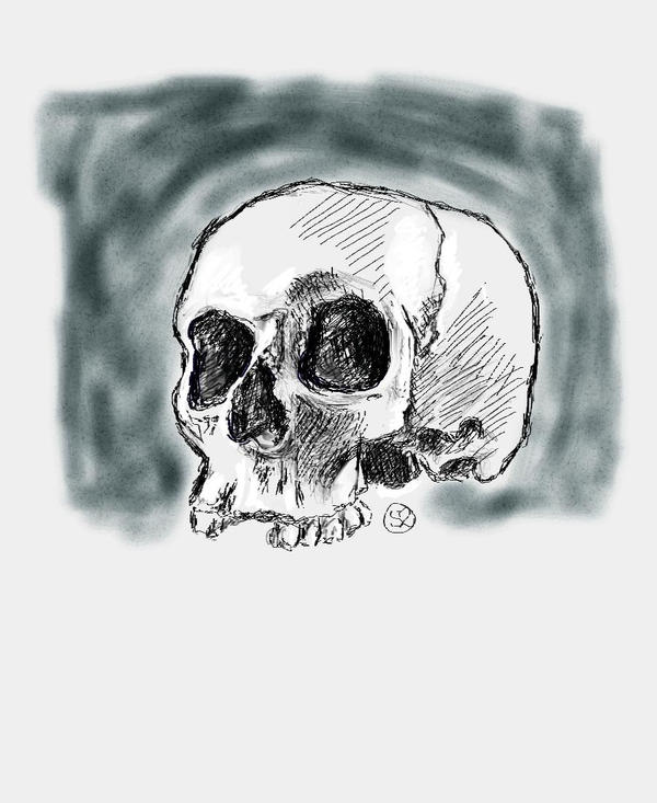 Skull1 by Luineannon