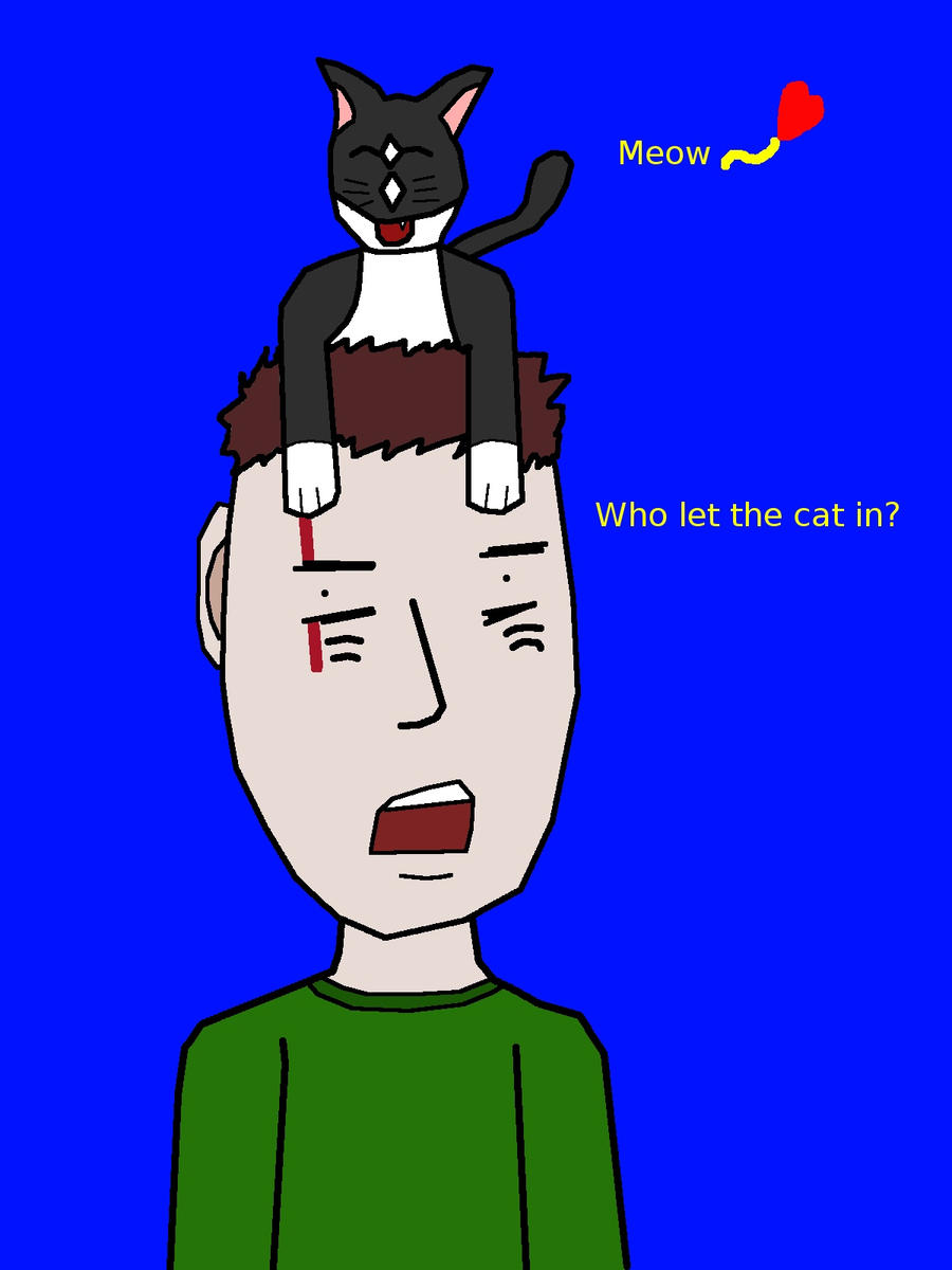Kitty attack by KuroKan
