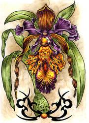 BlackOrchid or EvilOrchid by evilorchid
