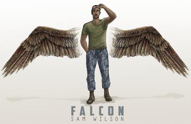 Falcon by skipaway
