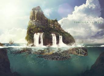 Teleidoscope 2014 - Tortuga island by DesireeDelgado