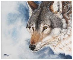 Wolf again