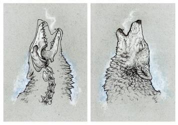 Howling by Kwazar