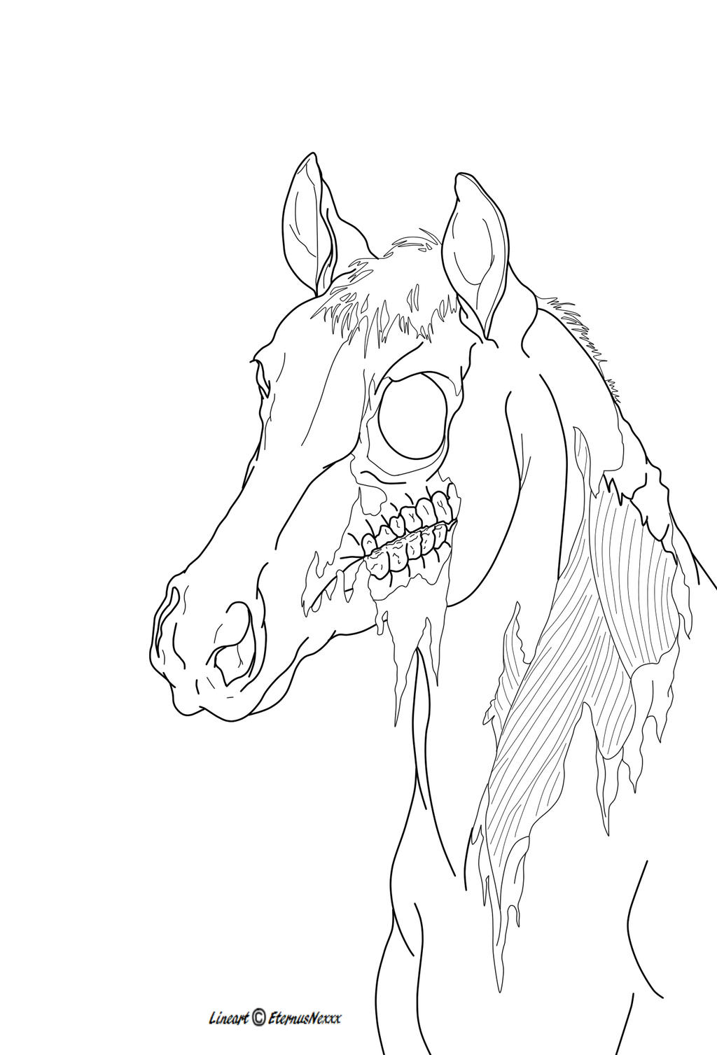 Line Drawing Of A Zombie : Zombie horse lineart by eternusnexxx on deviantart