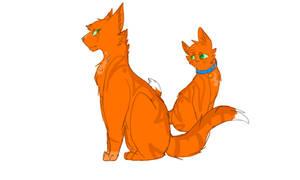 Firestar Warrior Cats