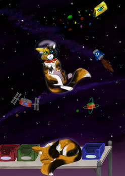 bodega cat dreams of stars