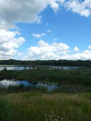 lake 2 by kingbob24