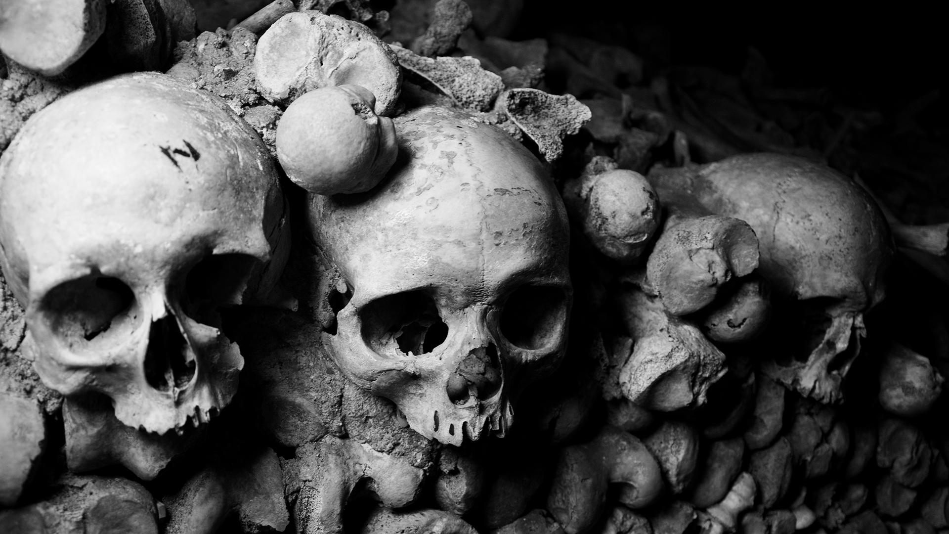 Skulls by dxd on deviantart - Scary skull backgrounds ...