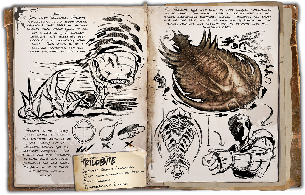 Ark Survival Evolved Dossiers Trilobite By Djdinojosh On Deviantart Pearls pearls are found on floors of water bodies. ark survival evolved dossiers