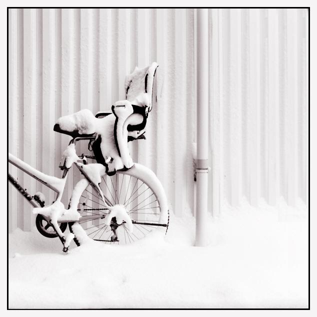 Snow by MaggiElvar