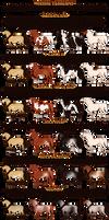 EquusBallator Visual Guide: White Patterns