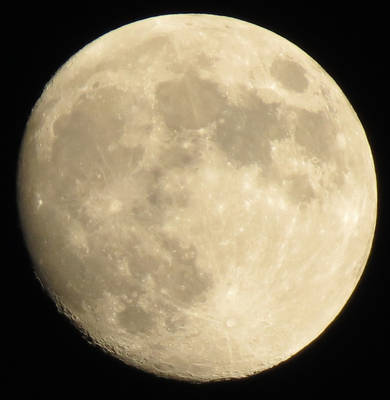 Moon with Cratered Circumference