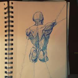 Anatomy on strings by Goombaslayer