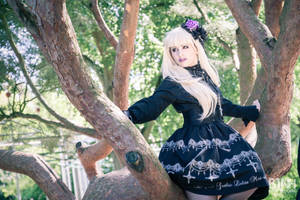 Dark Fairy of the Trees