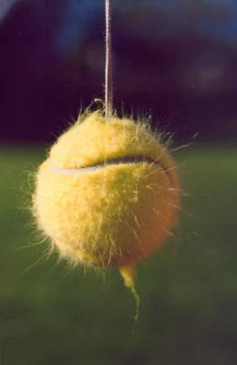 Fuzzy Static Tennisball 1