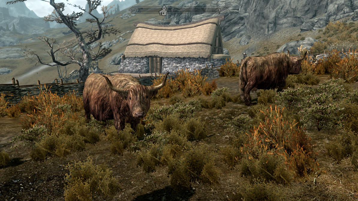 Skyrim Screenshot: Cows Go Moo by GwillaTheDragon