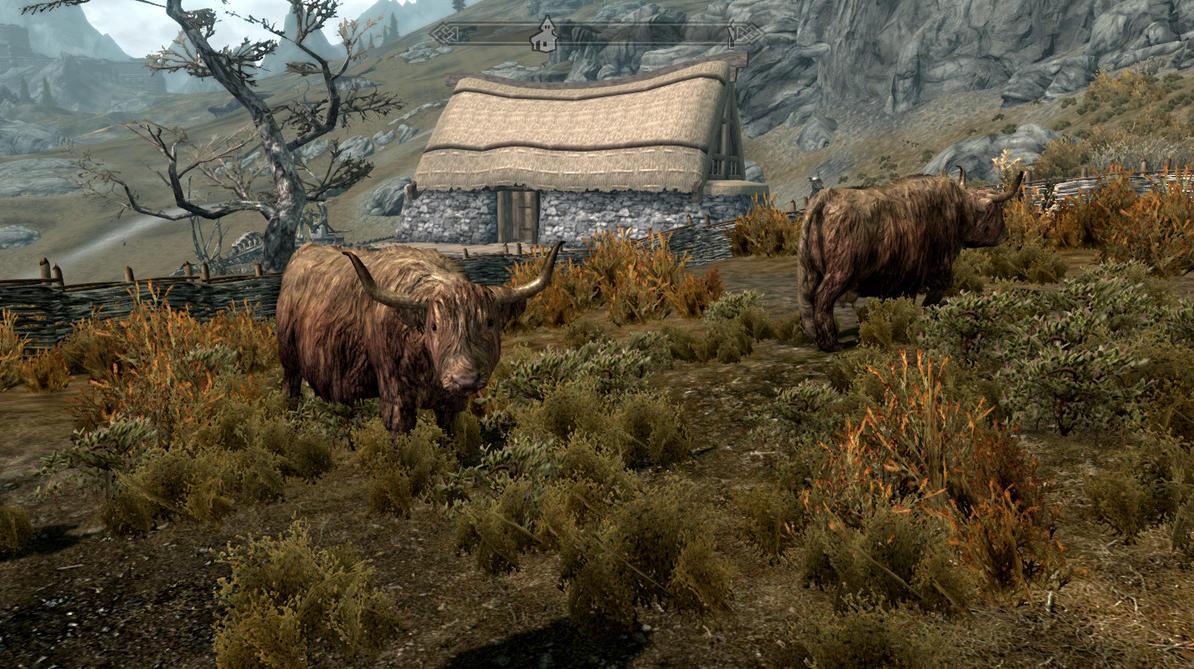 Skyrim Screenshot: Cows Go Moo by GwillaTheDragon
