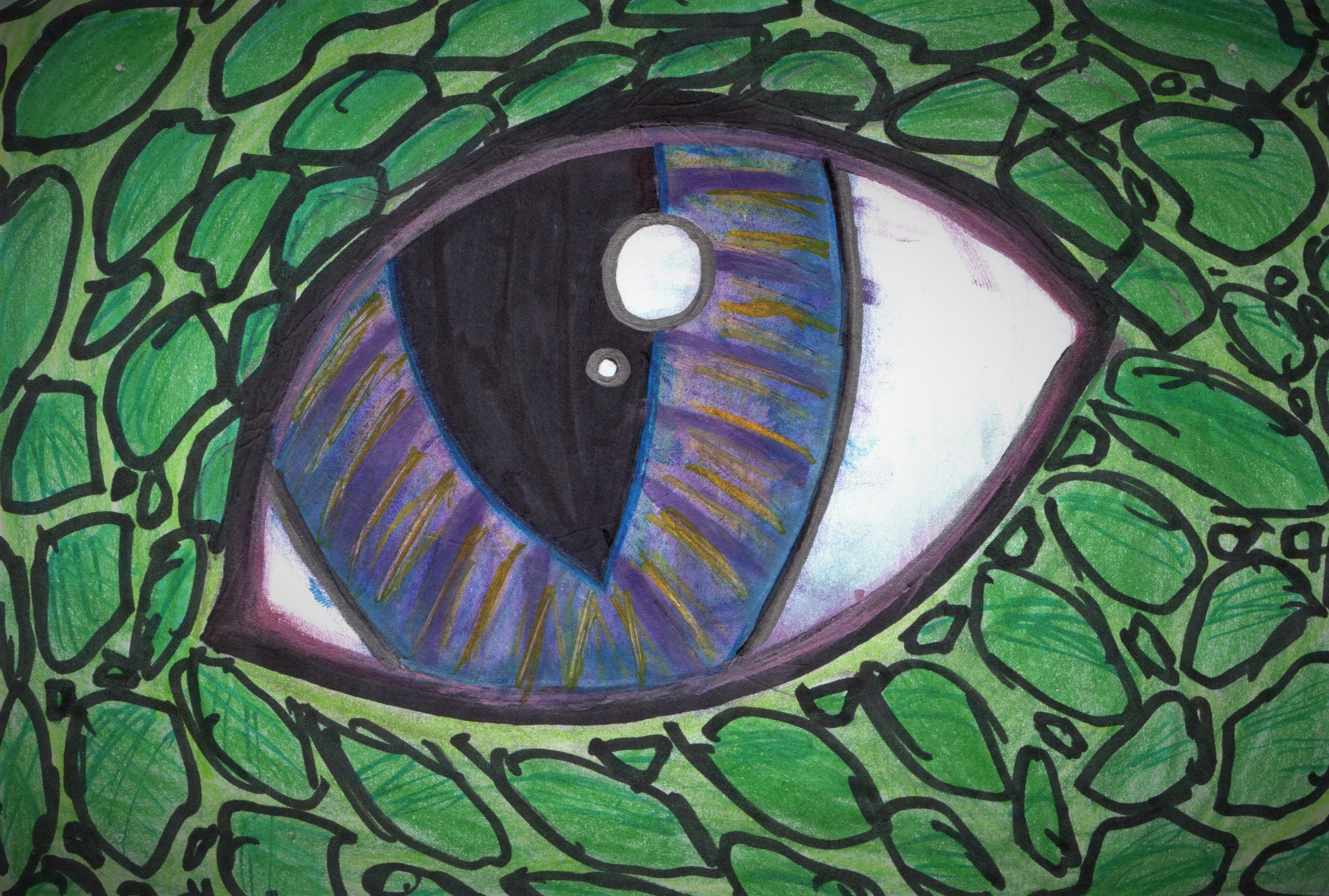 Dragon Eye by GwillaTheDragon