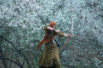 Elven hunt